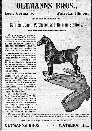 Oltmanns Brothers Horse Ad