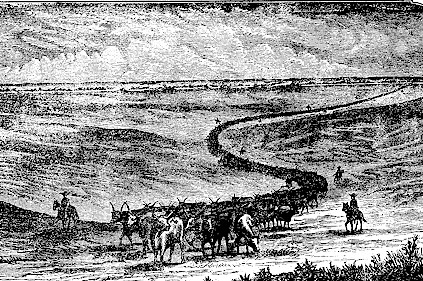 cattle drive etching